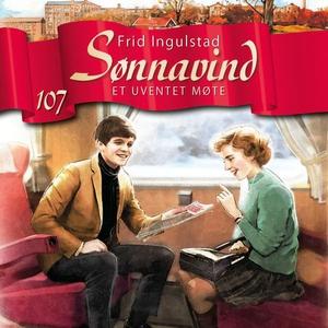 Et uventet møte (lydbok) av Frid Ingulstad