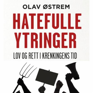 Hatefulle ytringer (lydbok) av Olav Østrem
