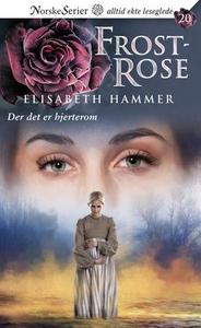 Der det er hjerterom (ebok) av Elisabeth Hamm