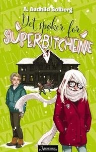Det spøker for superbitchene (ebok) av Audhil