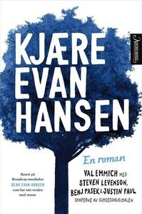 Kjære Evan Hansen (ebok) av Val Emmich
