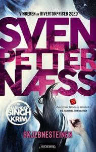 Skjebnesteinen (ebok) av Sven Petter Næss