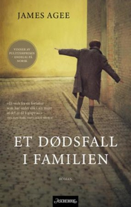 Et dødsfall i familien (ebok) av James Agee