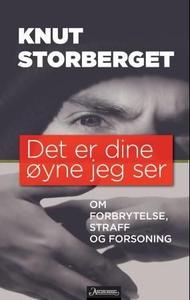 Det er dine øyne jeg ser (ebok) av Knut Storb