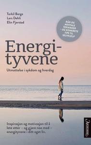 Energityvene (ebok) av Torkil Berge, Lars Deh