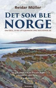 Det som ble Norge (ebok) av Reidar Müller