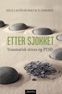 Etter sjokket (ebok) av Nille Lauvås, Rolf Ma