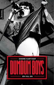 DumDum Boys - en vill en (ebok) av Sindre Kar