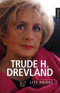 Litt privat (ebok) av Trude Drevland