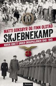 Skjebnekamp (ebok) av Matti Goksøyr, Finn Ols