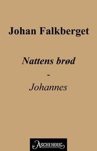 Nattens brød (ebok) av Johan Falkberget