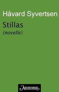 Stillas (ebok) av Håvard Syvertsen