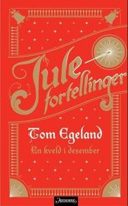 En kveld i desember (ebok) av Tom Egeland