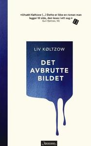 Det avbrutte bildet (ebok) av Liv Køltzow