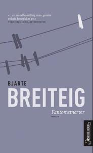 Fantomsmerter (ebok) av Bjarte Breiteig