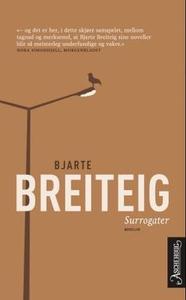 Surrogater (ebok) av Bjarte Breiteig