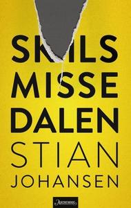 Skilsmissedalen (ebok) av Stian Johansen