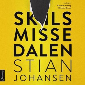 Skilsmissedalen (lydbok) av Stian Johansen