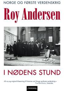 I nødens stund (ebok) av Roy Andersen