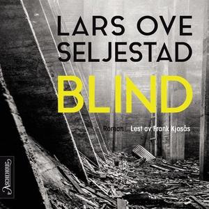 Blind (lydbok) av Lars Ove Seljestad