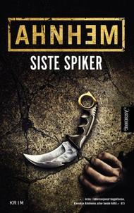 Siste spiker (ebok) av Stefan Ahnhem