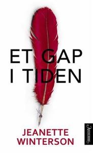 Et gap i tiden (ebok) av Jeanette Winterson