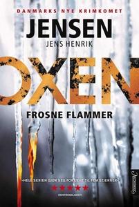 Frosne flammer (ebok) av Jens Henrik Jensen
