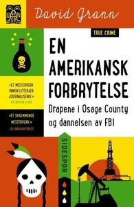 En amerikansk forbrytelse (ebok) av David Gra