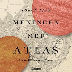 Meningen med Atlas (lydbok) av Torun Lian