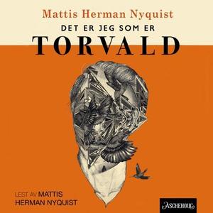 Det er jeg som er Torvald (lydbok) av Mattis