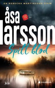 Spilt blod (ebok) av Åsa Larsson