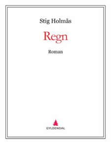 Regn (ebok) av Stig Holmås