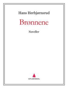 Brønnene (ebok) av Hans Herbjørnsrud