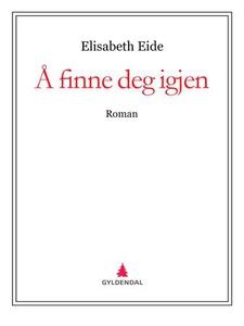 Å finne deg igjen (ebok) av Elisabeth Eide