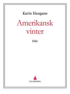 Amerikansk vinter (ebok) av Karin Haugane