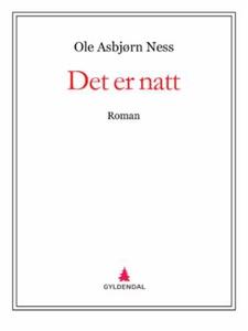 Det er natt (ebok) av Ole Asbjørn Ness