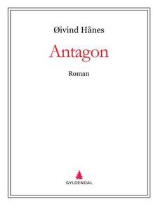 Antagon (ebok) av Øivind Hånes