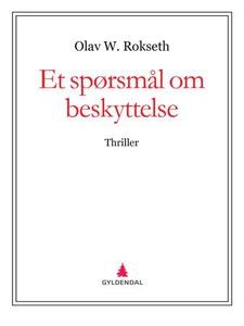 Et spørsmål om beskyttelse (ebok) av Olav W.