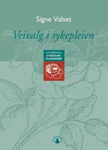 Veivalg i sykepleien (ebok) av Signe Valset