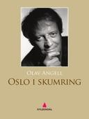 Oslo i skumring