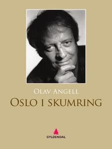 Oslo i skumring (ebok) av Olav Angell