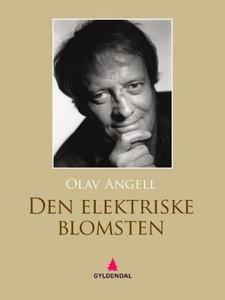 Den elektriske blomsten (ebok) av Olav Angell