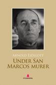 Under San Marcos murer