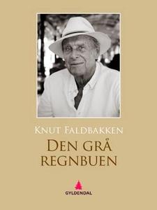 Den grå regnbuen (ebok) av Knut Faldbakken