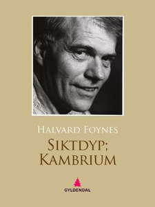 Siktdyp  kambrium (ebok) av Halvard Foynes