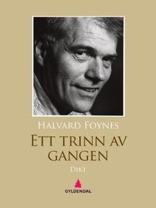 Ett trinn av gangen (ebok) av Halvard Foynes