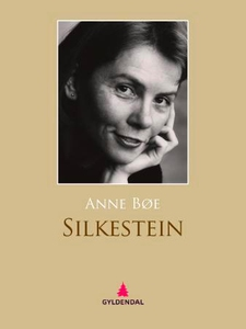 Silkestein (ebok) av Anne Bøe