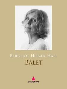 Bålet (ebok) av Bergljot Hobæk Haff