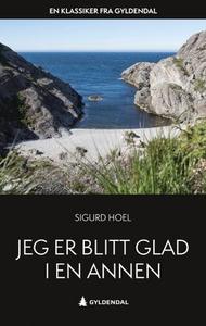 Jeg er blitt glad i en annen (ebok) av Sigurd