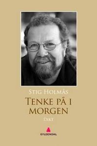 Tenke på i morgen (ebok) av Stig Holmås